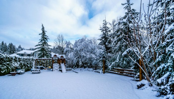 Staging Your Winter Backyard 5 Tips To Warm It Up